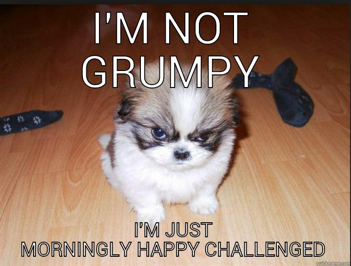 not a morning person - I'M NOT GRUMPY I'M JUST MORNINGLY HAPPY CHALLENGED Misc