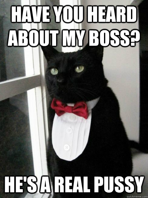Have you heard about my boss? He's a real pussy - Have you heard about my boss? He's a real pussy  Jenkins