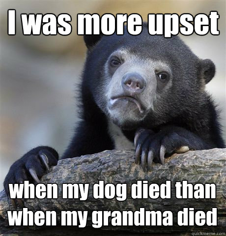 I was more upset when my dog died than when my grandma died - I was more upset when my dog died than when my grandma died  Confession Bear