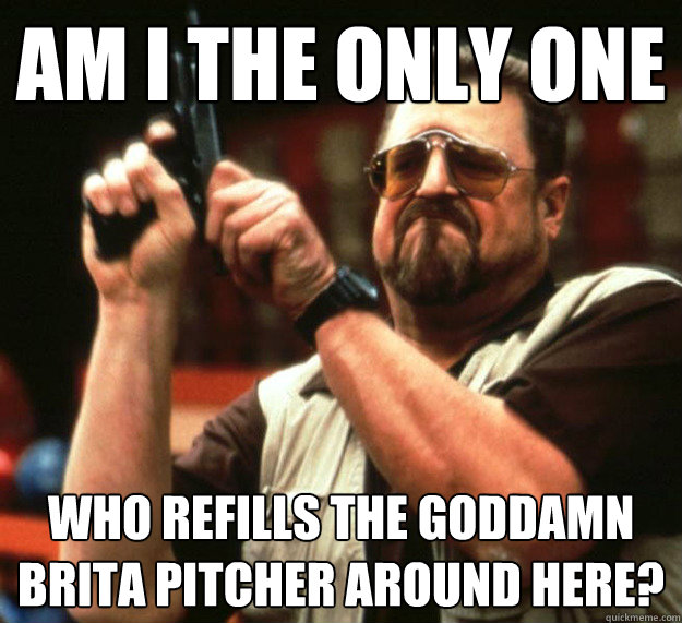 Am I THE ONLY ONE Who refills the goddamn brita pitcher around here?