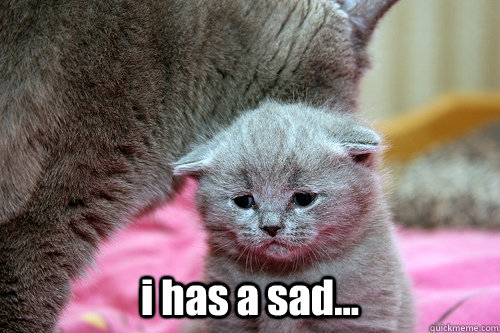 I Ll Miss You Funny Meme : Miss you cards etsy