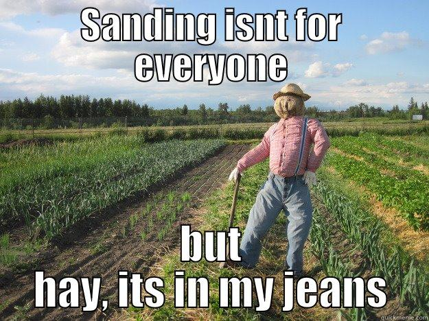 SANDING ISNT FOR EVERYONE BUT HAY, ITS IN MY JEANS Scarecrow