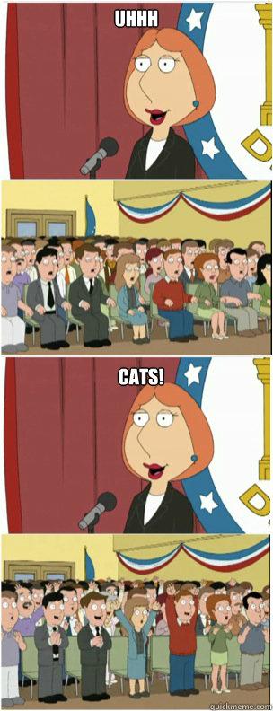 UHHH cats! - UHHH cats!  911 lois