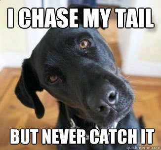 I chase my tail  but never catch it
