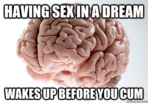 having sex in a dream wakes up before you cum - having sex in a dream wakes up before you cum  Scumbag Brain