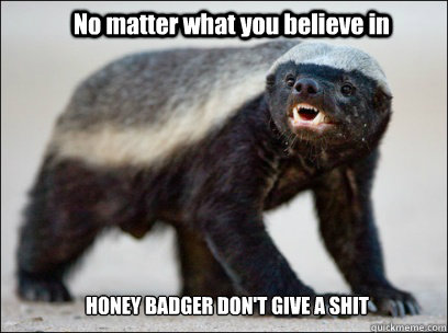 No matter what you believe in HONEY BADGER DON'T GIVE A SHIT