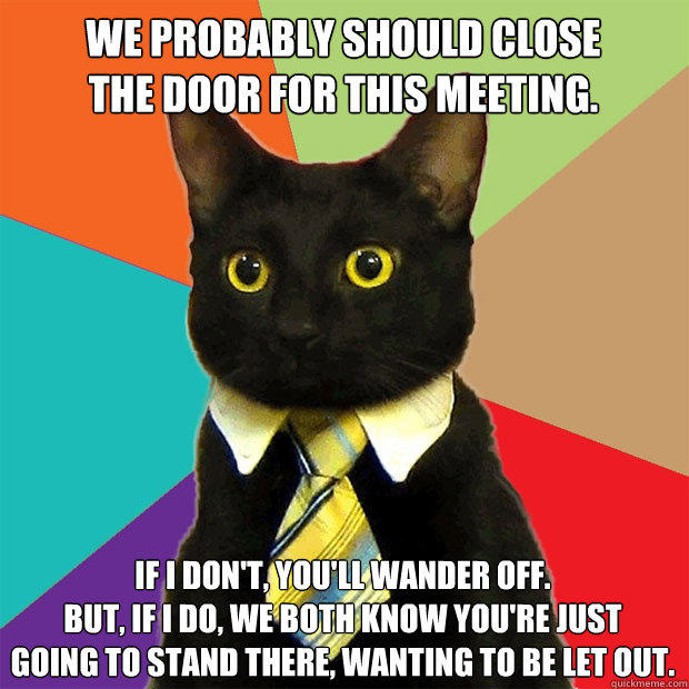 We probably should close the door for this meeting. If I don't, you'll wander off. But, if I do, we both know you're just going to stand there, wanting to be let out. - We probably should close the door for this meeting. If I don't, you'll wander off. But, if I do, we both know you're just going to stand there, wanting to be let out.  Business Cat