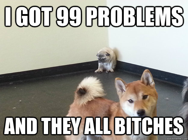 I got 99 problems and they all bitches - I got 99 problems and they all bitches  Misc