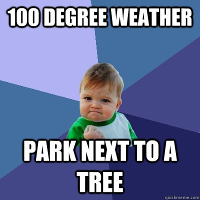 100 degree weather  park next to a tree - 100 degree weather  park next to a tree  Success Kid