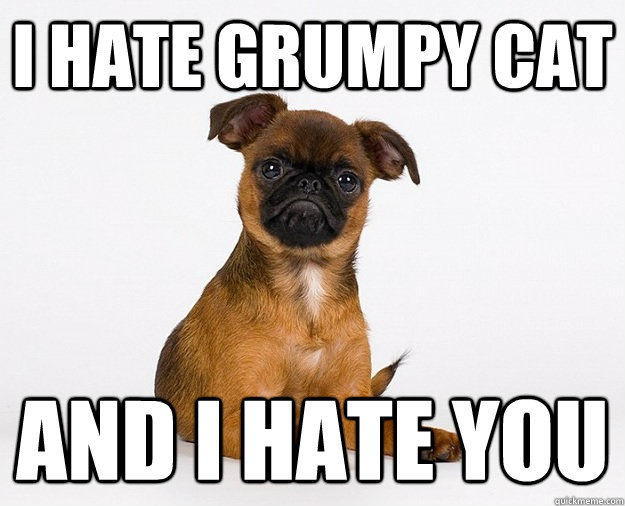 I hate grumpy cat and i hate you - I hate grumpy cat and i hate you  Misc