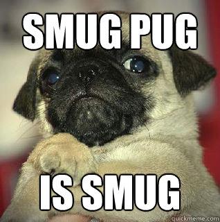 Smug pug is smug