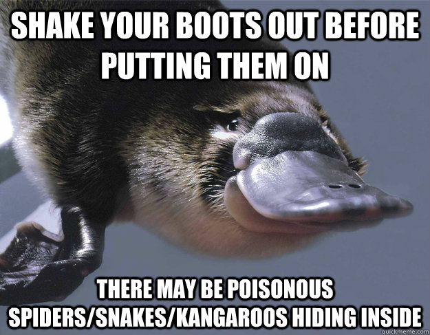 Shake your boots out before putting them on There may be poisonous spiders/snakes/kangaroos hiding inside  - Shake your boots out before putting them on There may be poisonous spiders/snakes/kangaroos hiding inside   Platypus