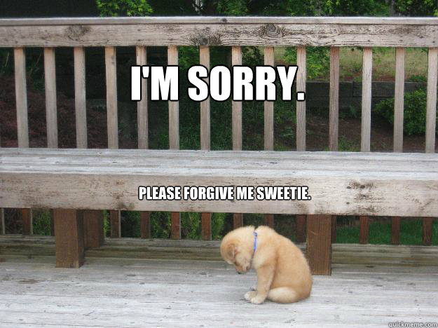 I'm sorry. Please forgive me sweetie.