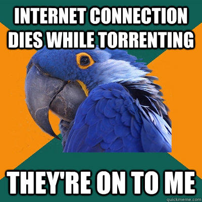 internet connection dies while torrenting they're on to me - internet connection dies while torrenting they're on to me  Paranoid Parrot