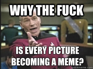 why the fuck is every picture becoming a meme? - why the fuck is every picture becoming a meme?  Annoyed Picard