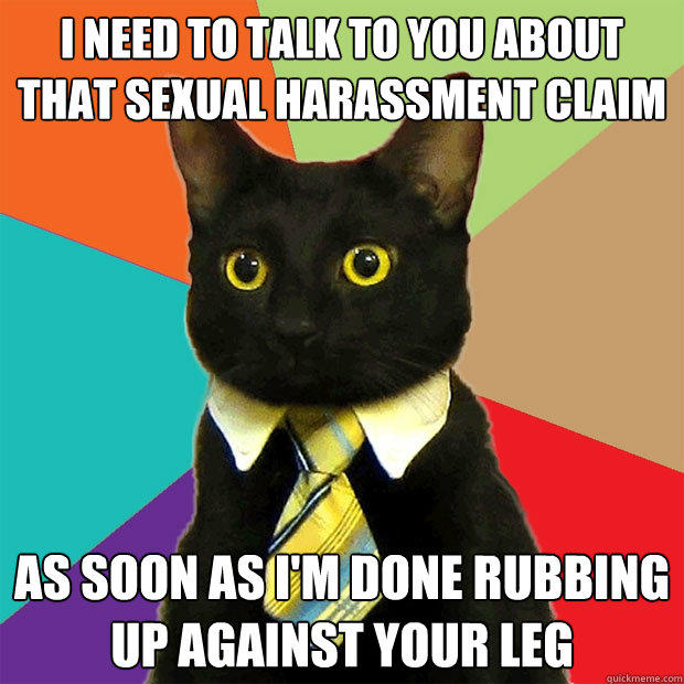 i need to talk to you about that sexual harassment claim as soon as i'm done rubbing up against your leg - i need to talk to you about that sexual harassment claim as soon as i'm done rubbing up against your leg  Business Cat