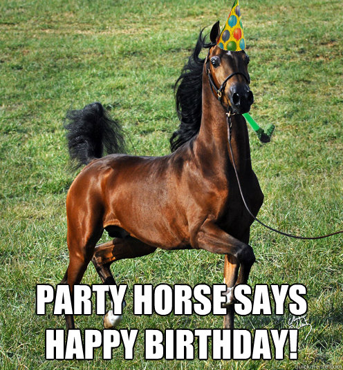Party Horse Says Happy Birthday