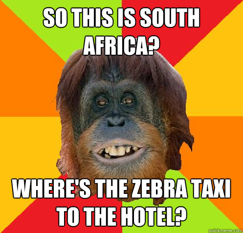 So this is South Africa? Where's the zebra taxi to the hotel?  Culturally Oblivious Orangutan