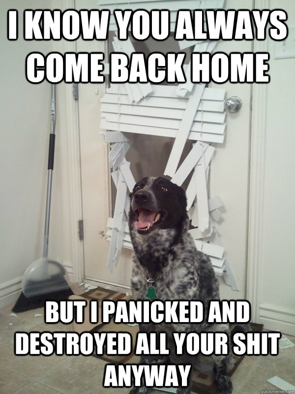 I know you always come back home But I panicked and destroyed all your shit anyway