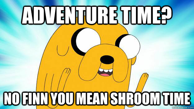 Adventure time? no finn you mean shroom time