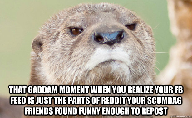 that gaddam moment when you realize your fb feed is just the parts of reddit your scumbag friends found funny enough to repost - that gaddam moment when you realize your fb feed is just the parts of reddit your scumbag friends found funny enough to repost  Misc