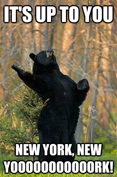 It's up to you New York, NEw Yooooooooooork!  Fabulous Bear
