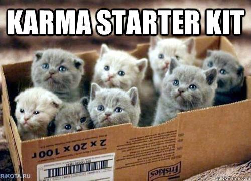 karma starter kit    Box of Kittens