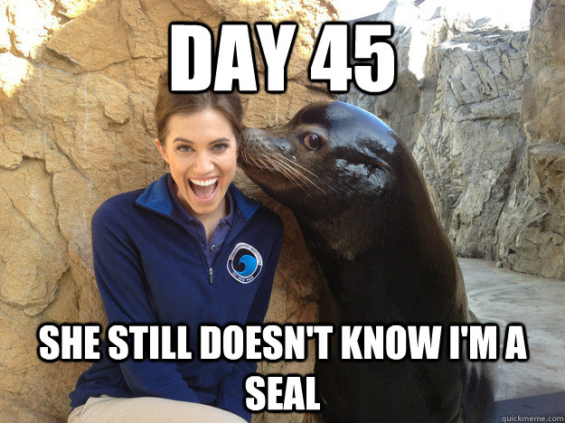 day 45 she still doesn't know i'm a seal - day 45 she still doesn't know i'm a seal  Crazy Secret