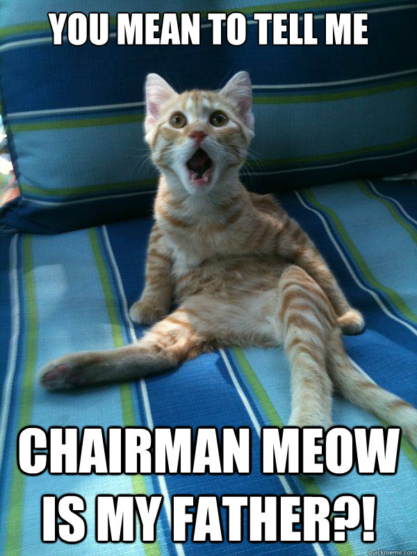 you mean to tell me Chairman Meow is my father?!