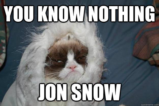 you know nothing jon snow - you know nothing jon snow  Misc