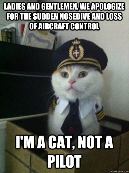 LADIES AND GENTLEMEN, WE APOLOGIZE FOR THE SUDDEN NOSEDIVE AND LOSS OF AIRCRAFT CONTROL I'm a cat, not a pilot - LADIES AND GENTLEMEN, WE APOLOGIZE FOR THE SUDDEN NOSEDIVE AND LOSS OF AIRCRAFT CONTROL I'm a cat, not a pilot  Captain kitteh