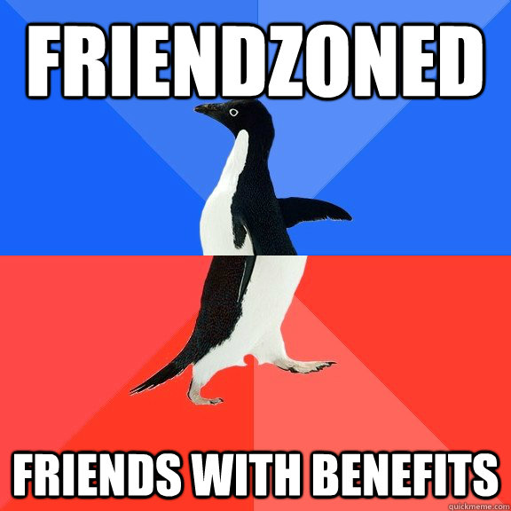 Friendzoned Friends with benefits - Friendzoned Friends with benefits  Socially Awkward Awesome Penguin