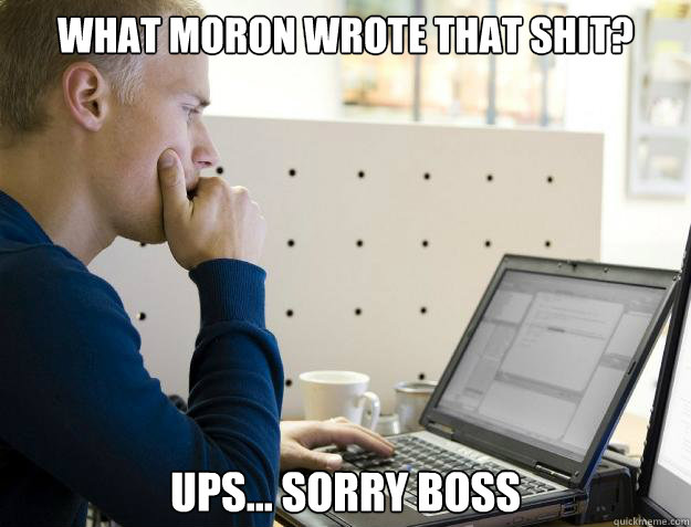 WHAT MORON WROTE THAT SHIT? UPS... SORRY BOSS - WHAT MORON WROTE THAT SHIT? UPS... SORRY BOSS  Programmer