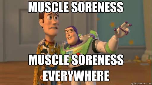 MUSCle soreness muscle soreness everywhere - MUSCle soreness muscle soreness everywhere  Everywhere