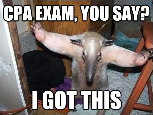 c08b2fb2e2cfe7eb586f003938d74d030e4fc02eaeaa178c05d633de32dee91e cpa exam, you say? i got this i got this quickmeme,
