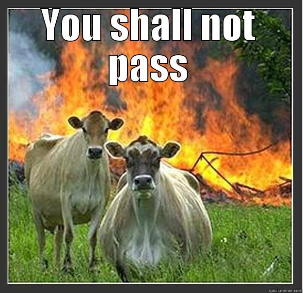you shall not pass - quickmeme