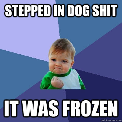 Stepped in dog shit it was frozen - Stepped in dog shit it was frozen  Success Kid
