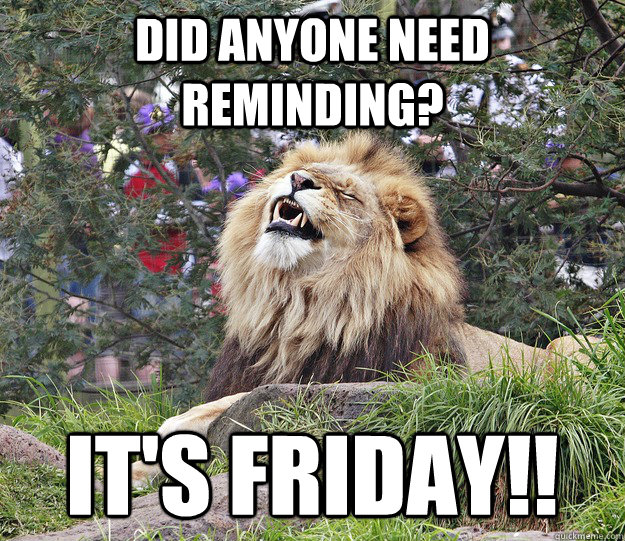 Did anyone need reminding? It's Friday!!