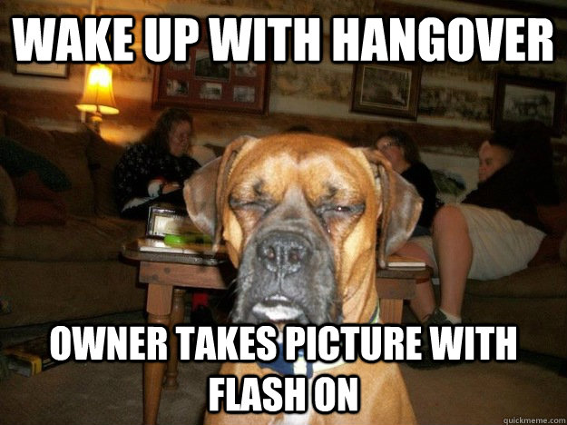 Sorry about my breath I had a ruff night - Hangover Dog