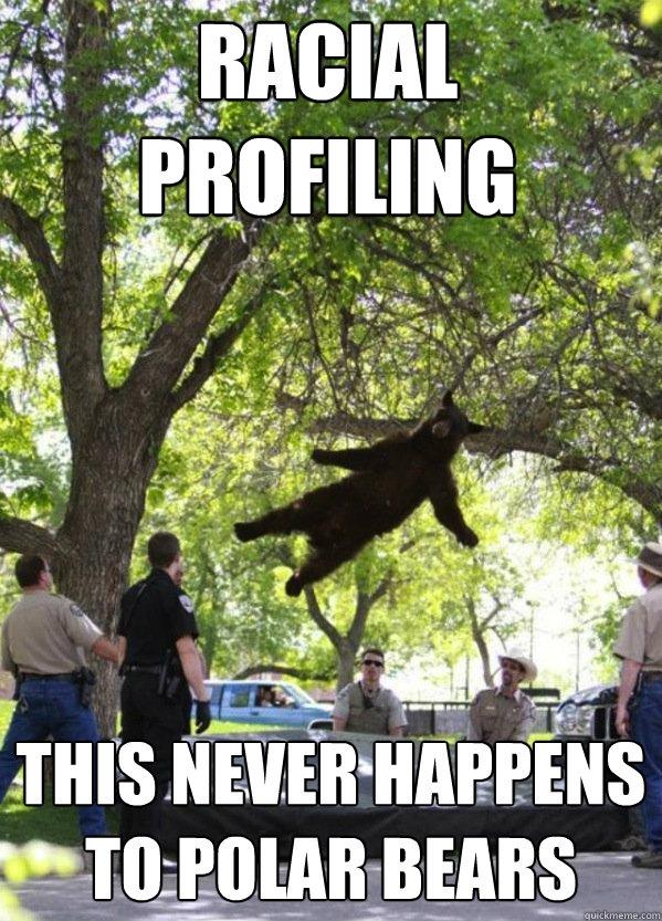 racial profiling facts
