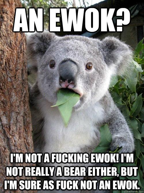 An EWOK?  I'm not a fucking ewok! I'm not really a bear either, but I'm sure as fuck not an ewok.  Surprised Koala