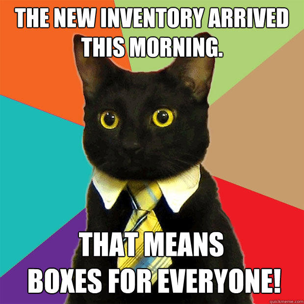 The new inventory arrived this morning. That means  boxes for everyone! - The new inventory arrived this morning. That means  boxes for everyone!  Business Cat