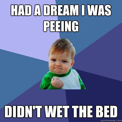 Had a dream I was peeing Didn't wet the bed - Had a dream I was peeing Didn't wet the bed  Success Kid