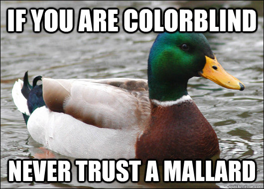 If you are colorblind never trust a mallard - If you are colorblind never trust a mallard  Misc