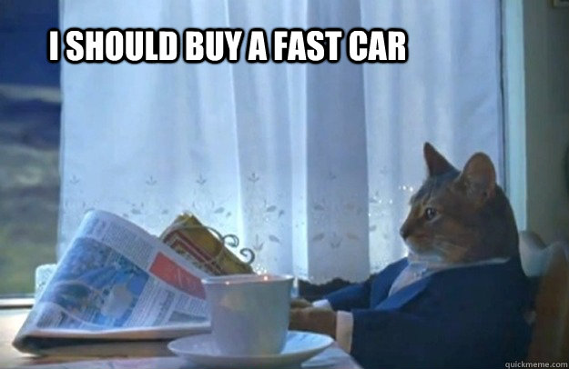 I should buy a fast car - I should buy a fast car  Sophisticated Cat