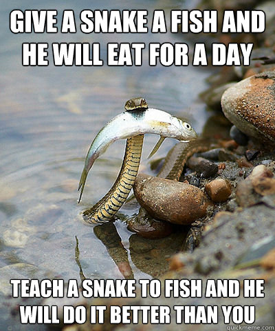 give a snake a fish and he will eat for a day teach a snake to fish and he will do it better than you  Fishing Snake
