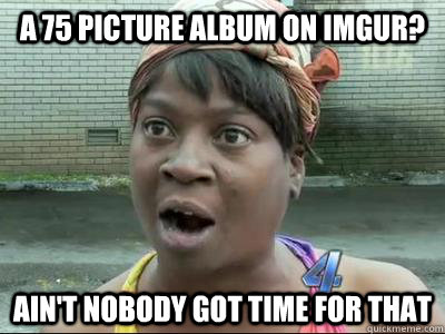a 75 picture album on imgur? Ain't Nobody Got Time For That