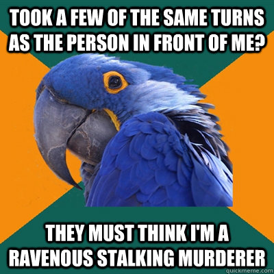 Took a few of the same turns as the person in front of me? they must think i'm a ravenous stalking murderer - Took a few of the same turns as the person in front of me? they must think i'm a ravenous stalking murderer  Paranoid Parrot
