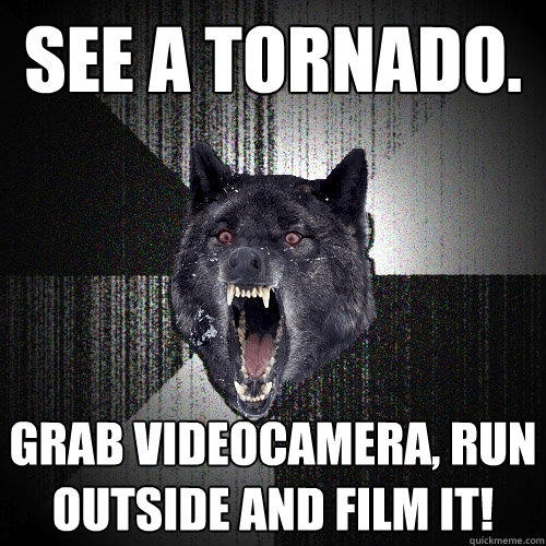 See a tornado. Grab videocamera, run outside and film it! - See a tornado. Grab videocamera, run outside and film it!  Insanity Wolf