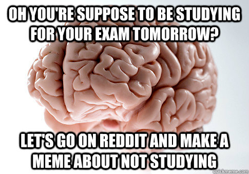Oh you're suppose to be studying for your exam tomorrow? Let's go on reddit and make a meme about not studying - Oh you're suppose to be studying for your exam tomorrow? Let's go on reddit and make a meme about not studying  Scumbag Brain